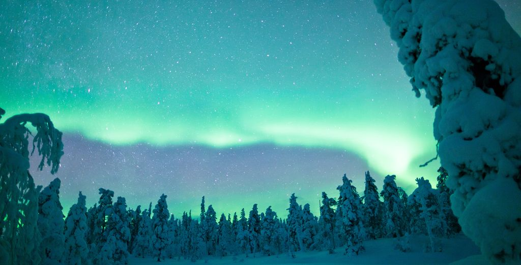 So book now to see the winter wonderland of Finland at its best