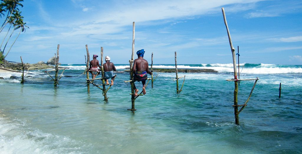 Discover the highlights of Sri Lanka on this cultural tour