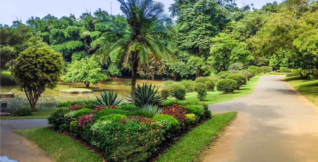 And meander through the bright beauty of the Royal Botanical Gardens