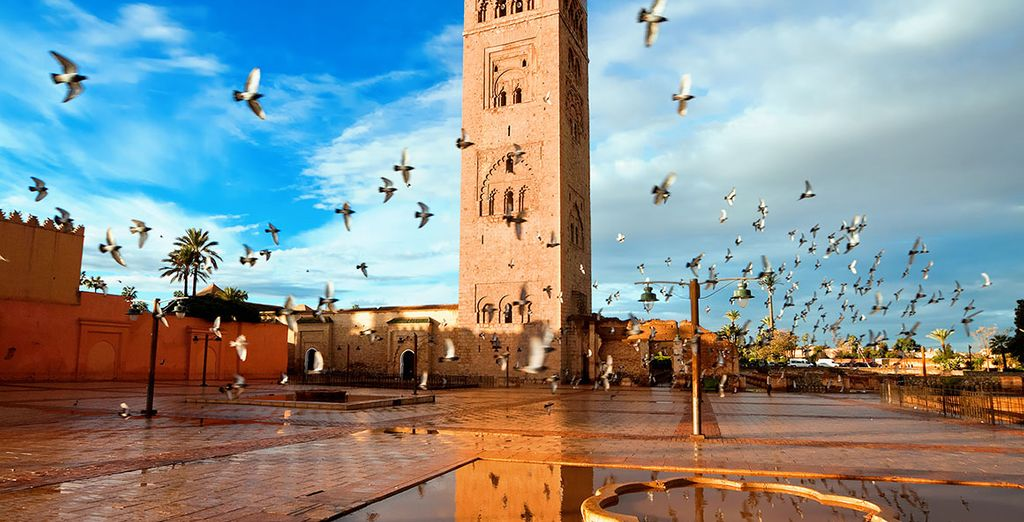 Or venture into Marrakech, just 25 minutes away