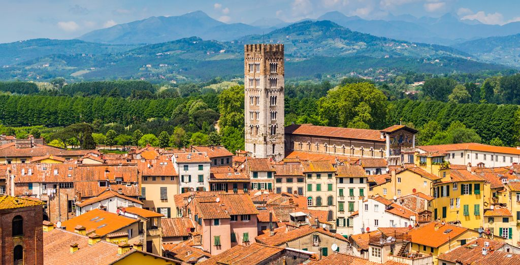 In the Lucca countryside