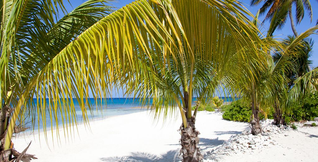 For a 7 night full board cruise (pictured: George Town, Grand Cayman)