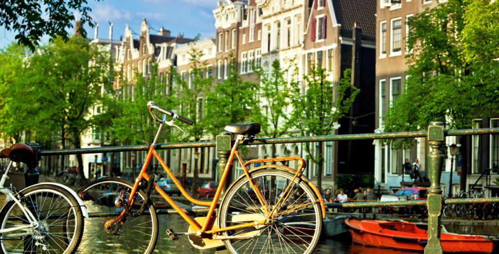 We have secured you a bike rental discount