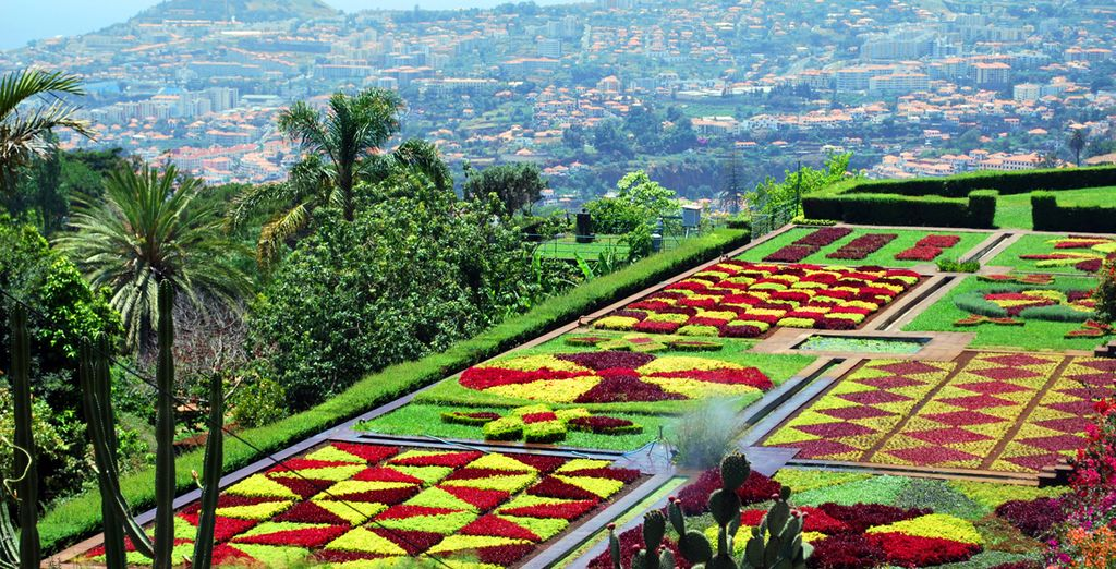 The botanical gardens of Funchal, Madeira