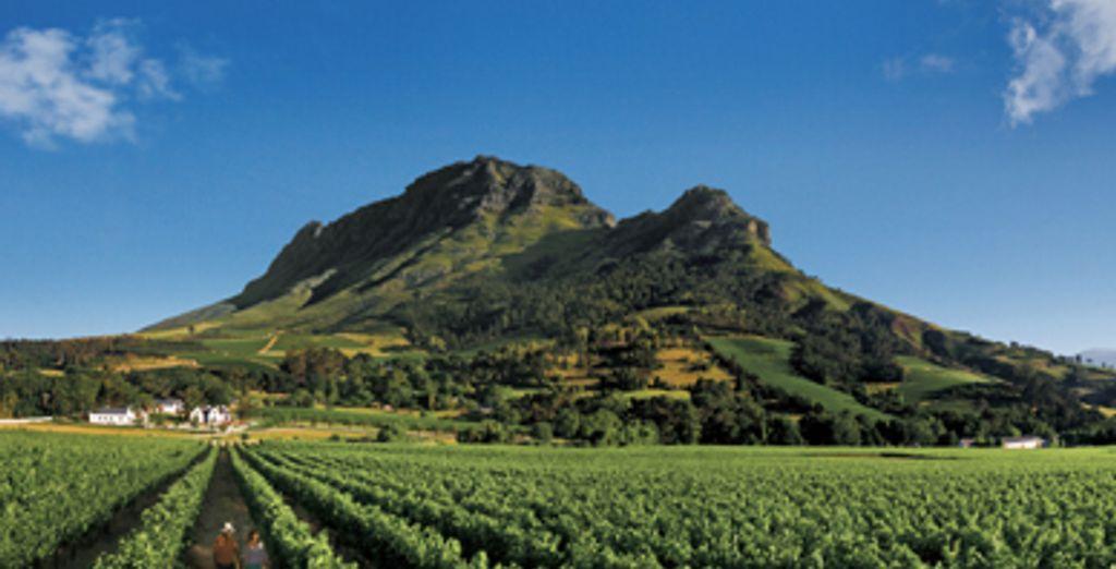 - The Last Word Franschhoek***** - Franschhoek - South Africa Franschhoek