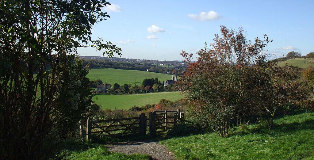 Explore Kent's beautiful countryside