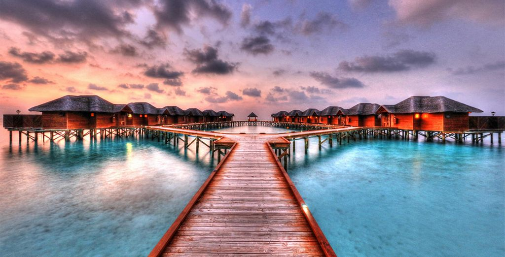 In this idyllic island paradise