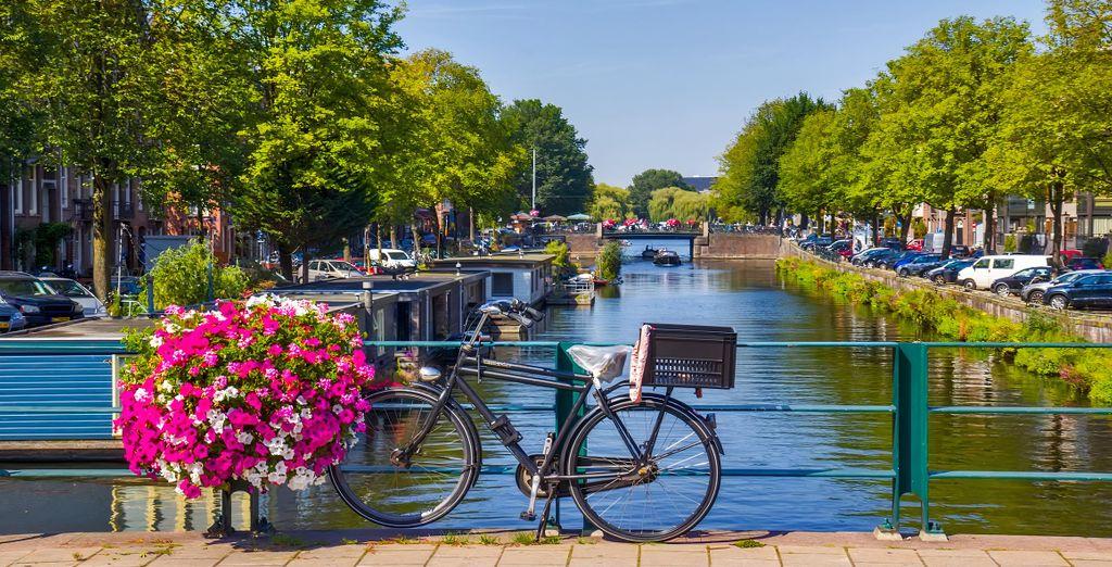 Eco-tourisme au Pays-Bas