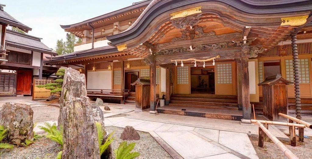 Immersive Tour of Japan 3/4*