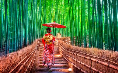 Die Schätze Japans