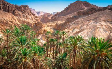 Encantos del desierto y playa