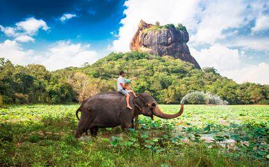 Circuito familiar en Sri Lanka