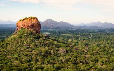 Tour privado por lo esencial de Sri Lanka