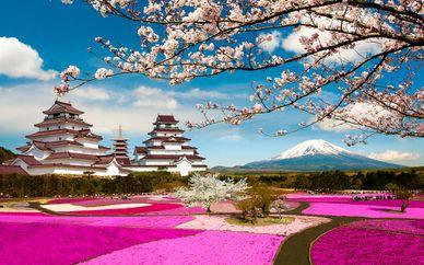 Séjour Authentique au Japon en 10, 12 ou 14 nuits