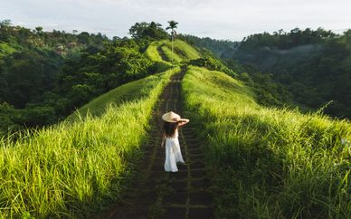 Circuit les couleurs de Bali et Gili
