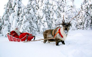 Noël magique à Rovaniemi