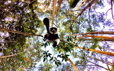 Tour alla scoperta del Madagascar tra natura e vulcani