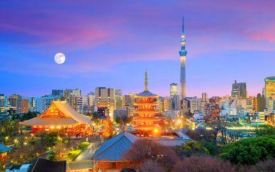 Tour del Giappone in libertà