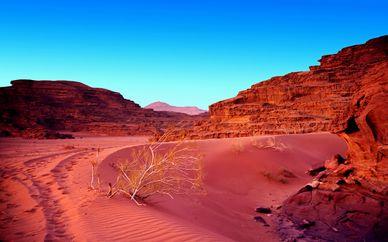 Tour alla scoperta della Giordania con estensione mare a Aqaba