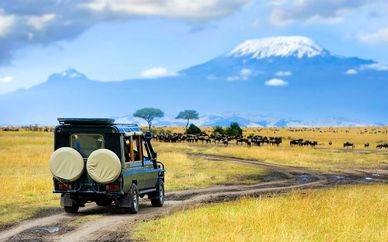 Safari alla scoperta del Kenya