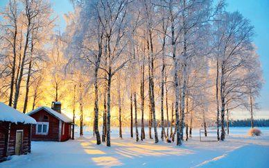 Rovaniemi, safari e cottage da fiaba