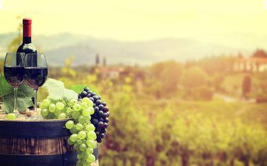 Wine tour della Toscana