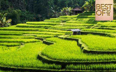 Jungle Retreat Ubud & The Sintesa Jimbaran 5*
