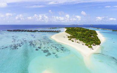 Sri Lanka Tour & Paradise Island Resort & Spa 4/5*