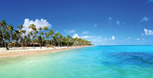 Hôtel Barcelo Bavaro Beach Resort 5* - Adults Only