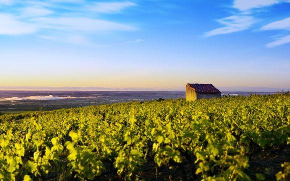 Welkom in ... Bourgogne!