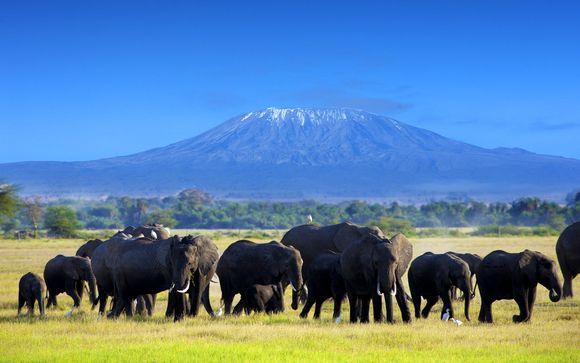 3 nachten safari: Tsavo East / Amboseli / Saltlick