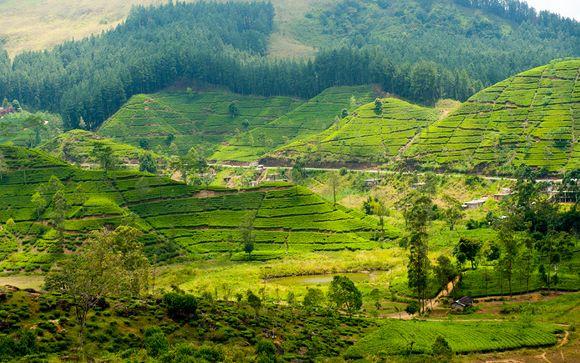 Willkommen auf... Sri Lanka !