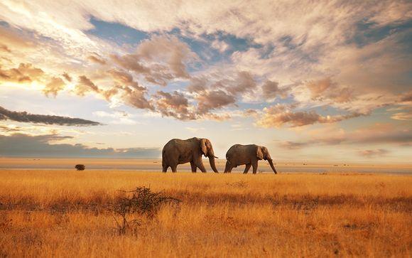 Ihre Reiseroute auf Ihrer Safari im Detail