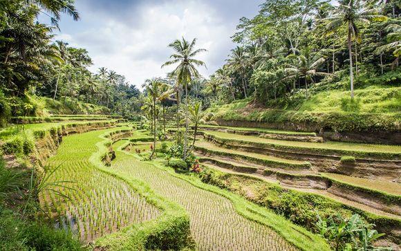 Indonesia Sanur - Sens Ubud 4* y Artotel Sanur 4* desde 835,00 €