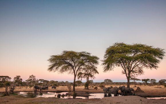 Safari a Masai Mara