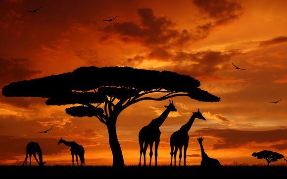 Kenia te espera