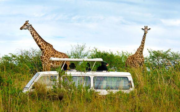 Safari a Ngutuni/Taita Hills Saltick Longe