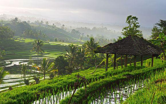 Singapur y Bali te esperan
