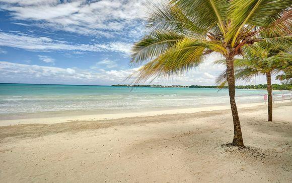 Miami y Jamaica te esperan