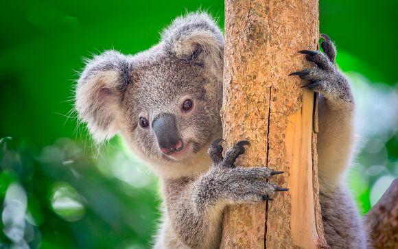 Australia Melbourne - Ciudades, Paisajes, Barrera de Coral y Bosques desde 2.411,00 €