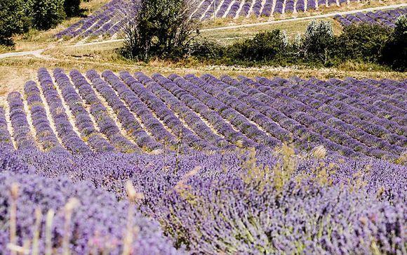 Rendez-vous en ... Provence