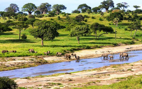 Zoom sur votre safari possible