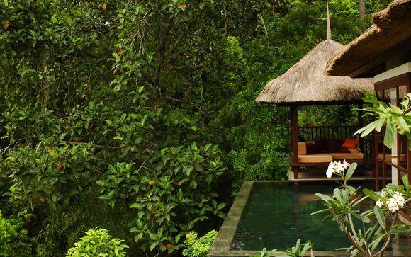 Suivez-nous... à Bali