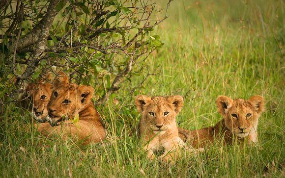 Rendez-vous... au Kenya