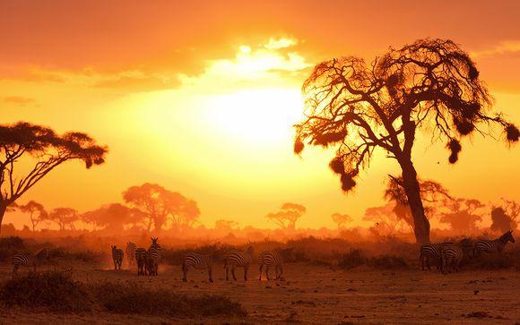 Zoom sur votre programme Safari Kenya - 6 jours/5 nuits