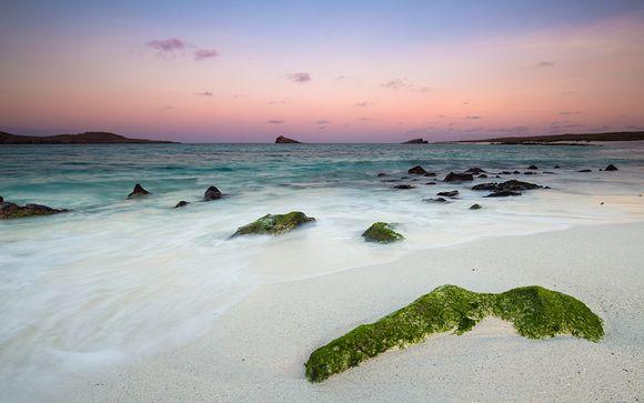 Zoom sur votre programme aux Galapagos (offre 1)