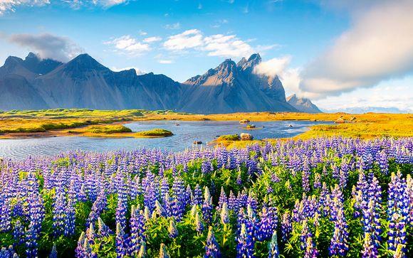 Un été grandiose avec guide francophone - Reykjavik -