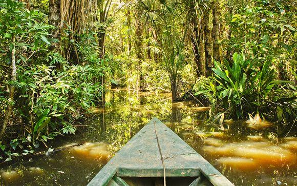 Offre 2 : Zoom sur votre programme avec extension en Amazonie en hôtel 3*
