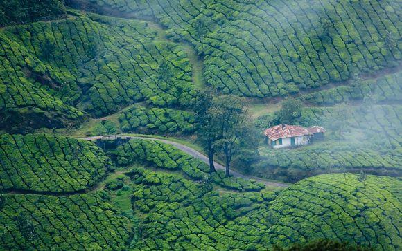 Votre pré-extension au Kerala