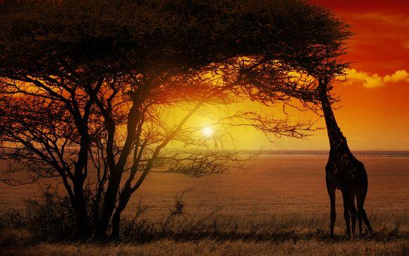 Autotour du Cap au Parc Kruger